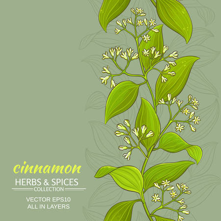 patten: Cinnamon branches vector pattern on color background