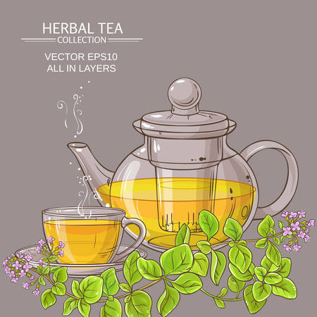 cup of oregano tea in teapot Çizim