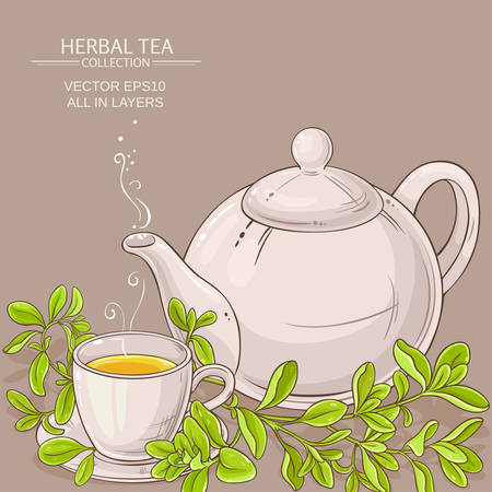 cup of marjoram tea and teapot Illustration