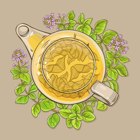 Oregano tea in teapot on color background