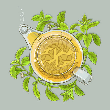stevia tea in teapot on color background Illustration