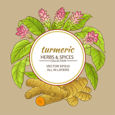 turmeric vector frame Stock Illustratie