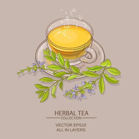 illustrazione vettoriale di tè di salvia sullo sfondo di colore