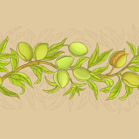 almond branches vector pattern on color background