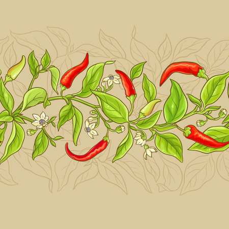 Cayenne pepper branches pattern on color background Stock Photo
