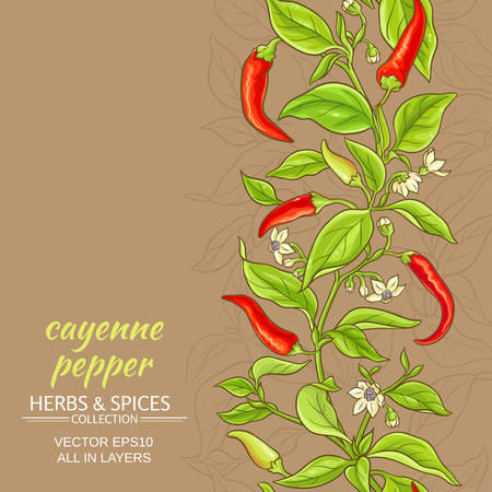 Cayenne pepper vector pattern on color background