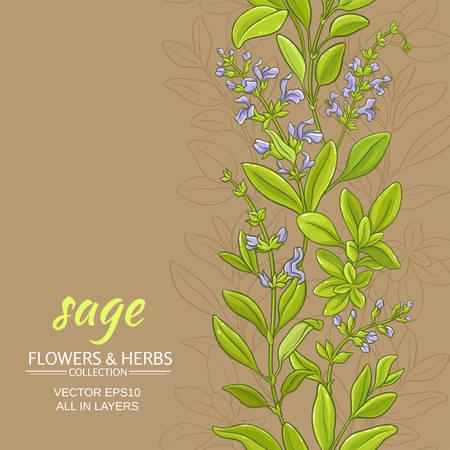 sage vector pattern on color backround