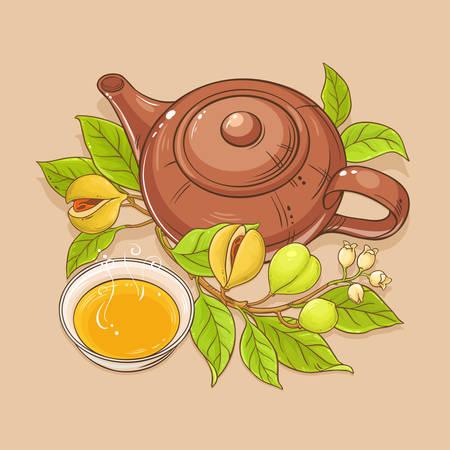 Nutmeg tea vector illustration on color background Ilustração