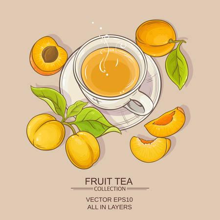 Apricot tea vector illustration on color background Ilustração