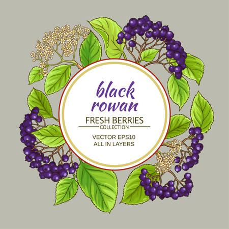 Black rowan vector frame on color background, vector illustration.