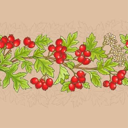 De meidoorn vertakt zich vectorpatroon op kleurenachtergrond Stock Illustratie