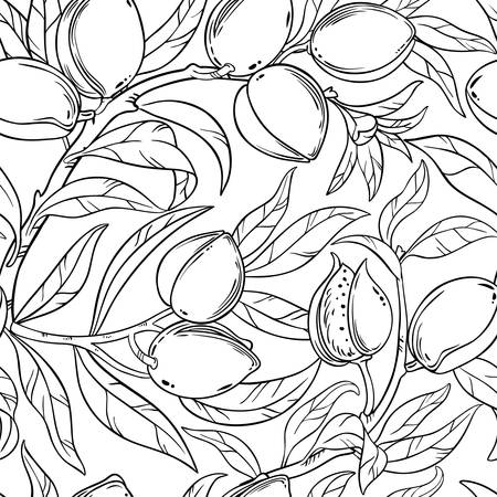 almond branches seamless pattern on white background Vettoriali