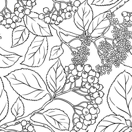 Black rowan seamless pattern