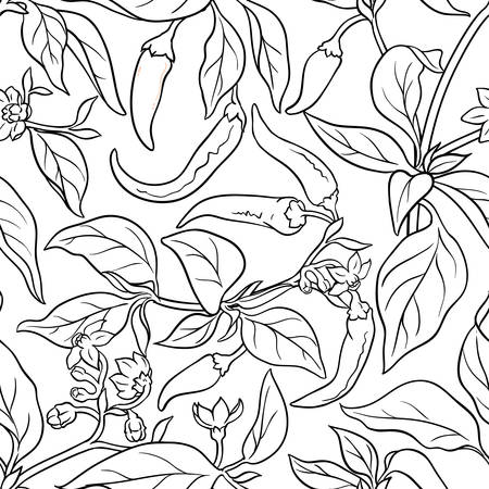 cayenne pepper seamless pattern on white background