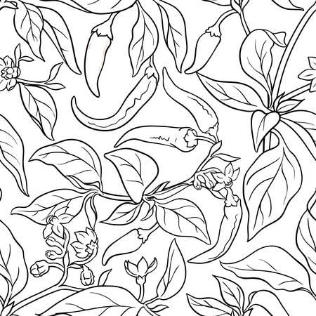 cayenne pepper seamless pattern on white background
