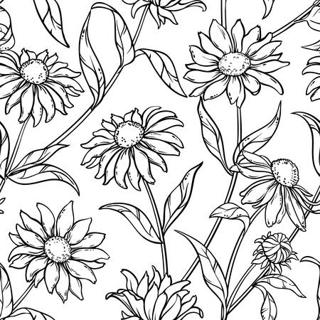 Echinacea seamless pattern in black and white. Vectores