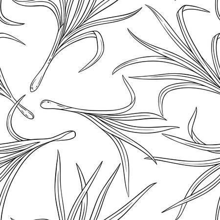 lemongrass plant seamless pattern on white background Illustration