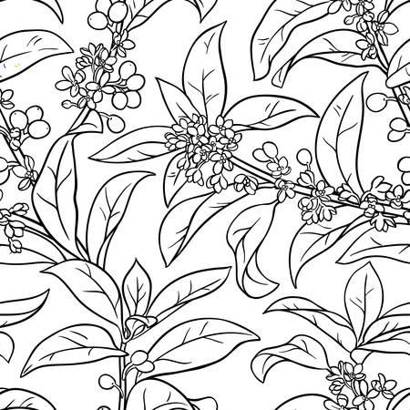 osmanthus seamless pattern illustration.