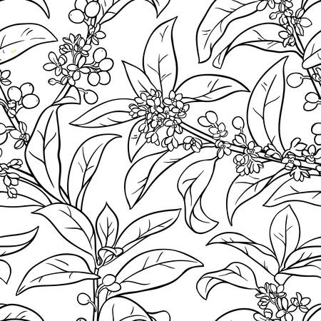 osmanthus seamless pattern illustration.