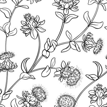 safflower seamless pattern illustration.