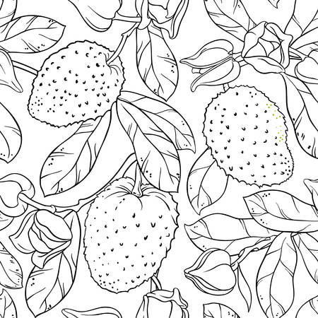 soursop branches seamless pattern on white background Illustration