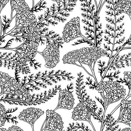 yarrow seamless pattern Ilustracja
