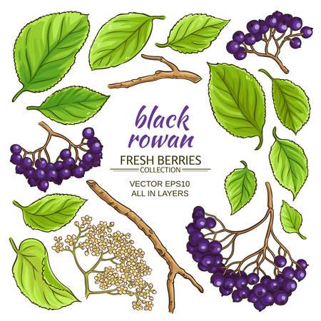black rowan elements set Illustration