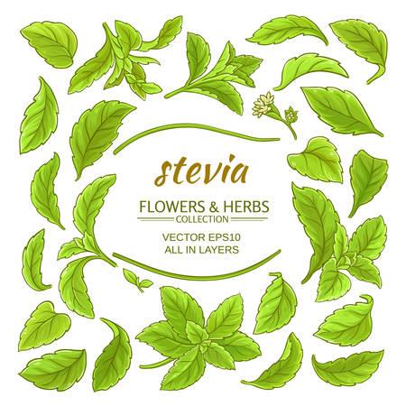 stevia elements vector set