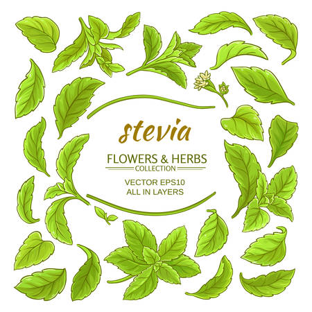 stevia elements vector set
