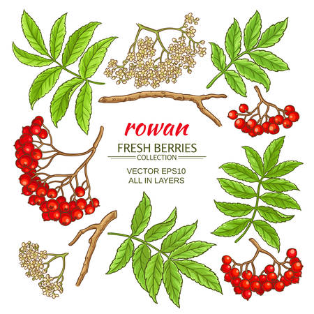 rowan elements frame design