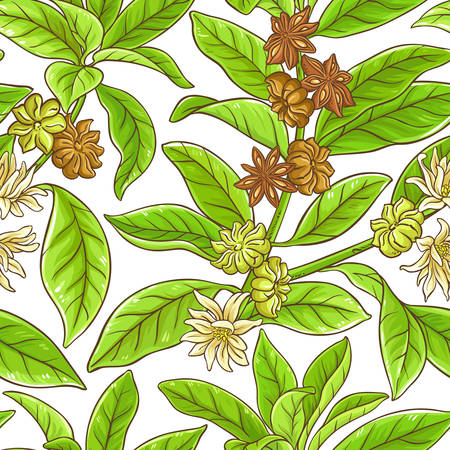 Anise branches pattern 向量圖像