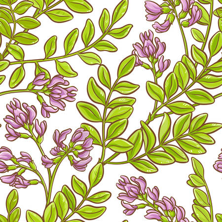 Astragalus vector pattern