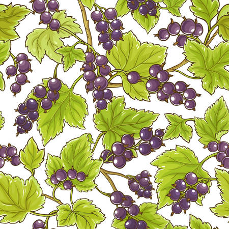 Black currant vector pattern Ilustracja