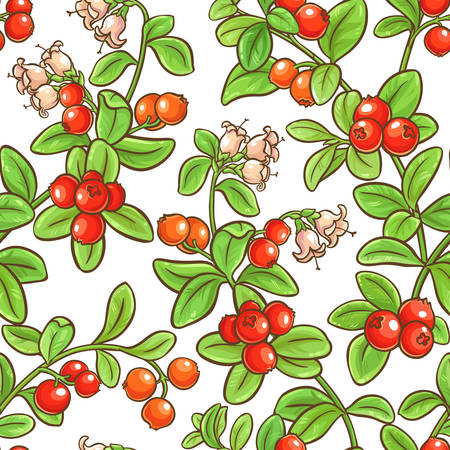 cranberry branch vector pattern
