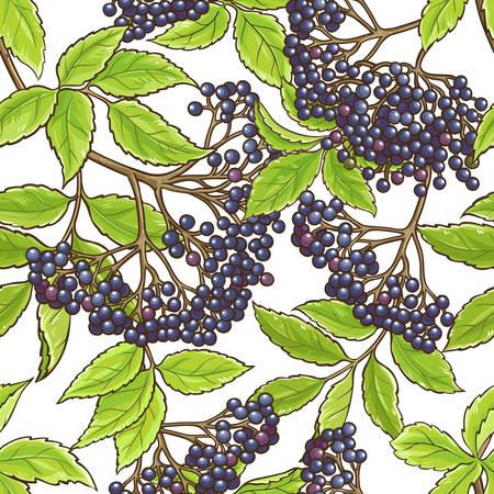 Elderberry branch vector seamless pattern background design