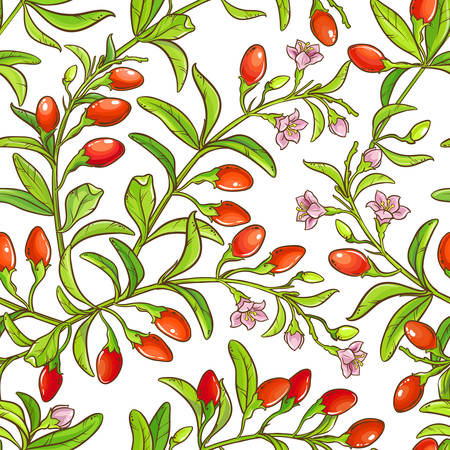 A goji branch vector pattern on white background Illustration