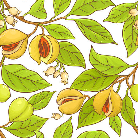 Nutmeg branch vector pattern.