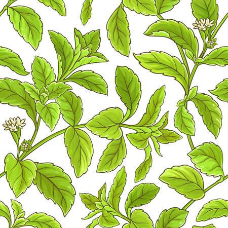 Stevia branch vector pattern