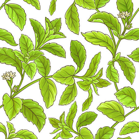 Stevia branch vector pattern