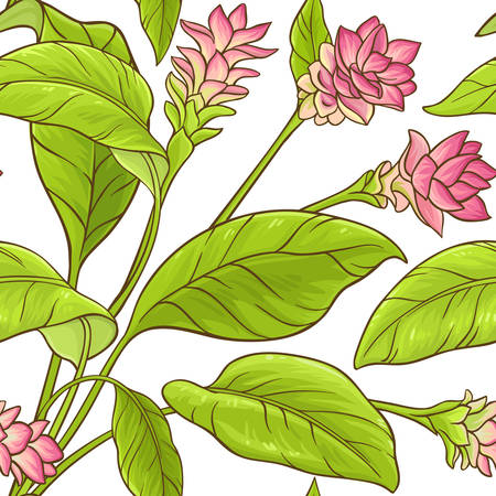 Turmeric plant vector pattern Illustration