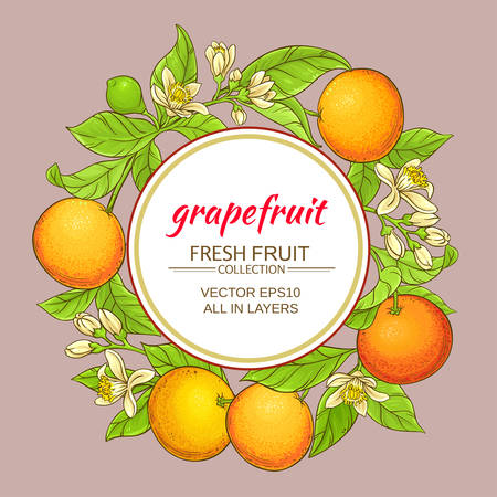 Grapefruit vector frame