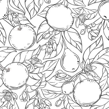 Grapefruit vector pattern Stock Illustratie