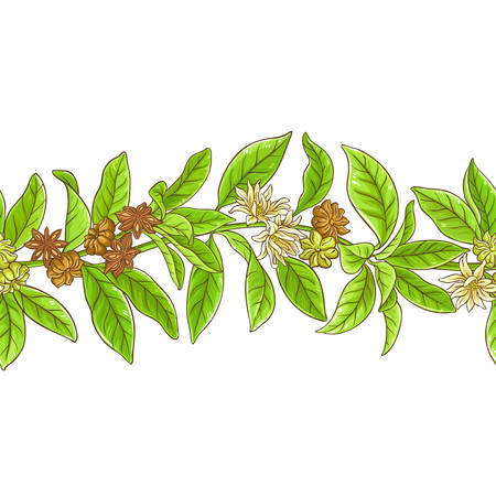 Aromatic star anise branches pattern on white backdrop illustration.