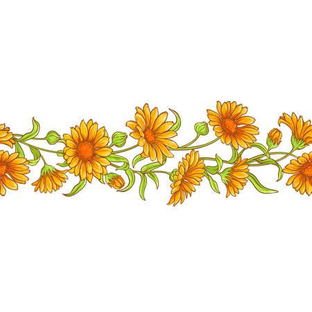 Calendula flower vector pattern seamless pattern design