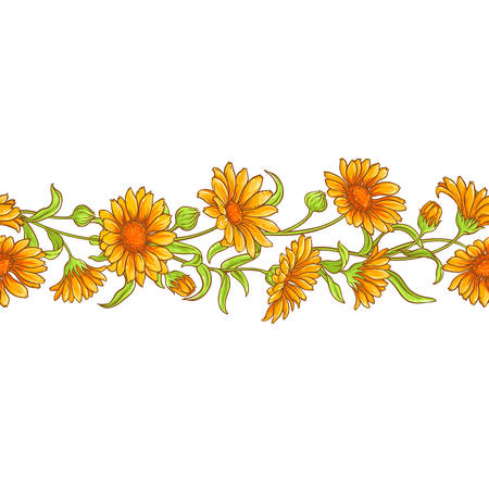 Calendula flower vector pattern seamless pattern design