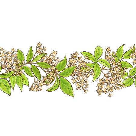 Elderberry branch vector pattern seamless pattern design