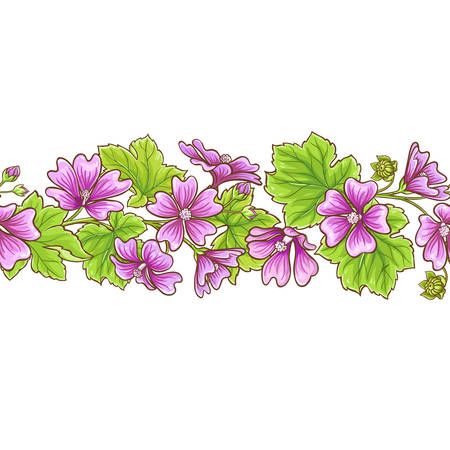 Malva flowers vector frame on white background