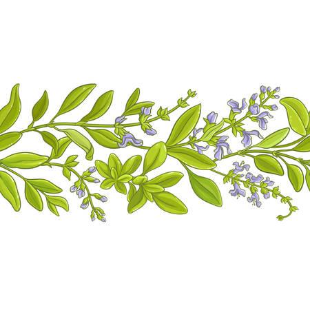 Sage branch vector pattern. Vettoriali
