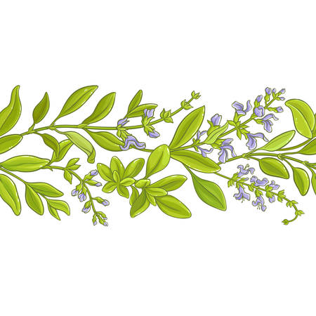Sage branch vector pattern. Иллюстрация