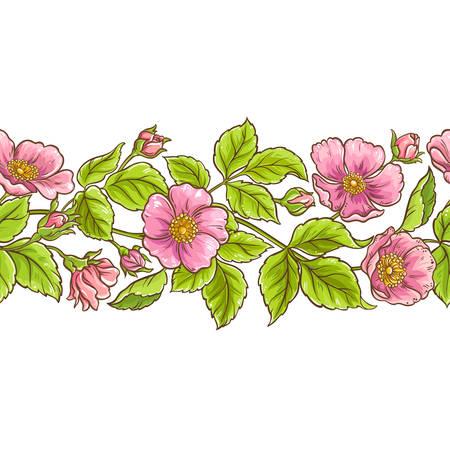 Wild rose vector pattern.  イラスト・ベクター素材